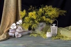 La vie toujours avec des branches de mimosa Photographie stock