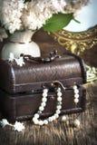 La vie toujours avec des colliers de coffre au trésor et de perle Image stock