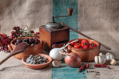 La vie toujours avec des légumes et des herbes sèches Photo stock