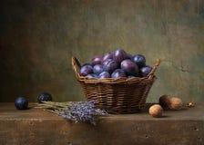 La vie toujours avec des prunes Photographie stock