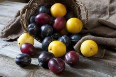La vie toujours avec des prunes dans un panier sur la table Images libres de droits