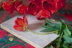 La vie toujours avec des tulipes Images libres de droits
