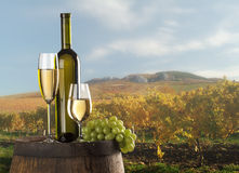 La vie toujours avec du vin blanc Photographie stock libre de droits