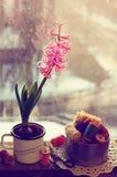 La vie toujours avec la jacinthe rose et les bobines en bois de fil Photos libres de droits