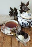 La vie toujours avec le service de thé Images stock