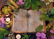 La vie toujours avec le vieux livre, les bougies, les bouteilles en verre et les herbes curatives Photo stock