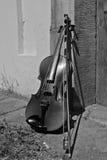 La vie toujours avec le violon Photo libre de droits