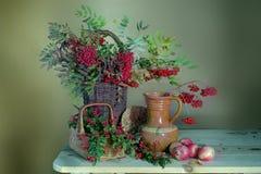 La vie toujours avec les baies de sorbe, le viburnum, le berbéris et les pommes Beau bouquet avec les baies et les pommes rouges photos libres de droits