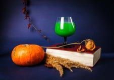 La vie toujours avec les boissons de potiron, de livre, roses et de Halloween Image stock