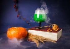 La vie toujours avec les boissons de potiron, de livre, roses et de Halloween photographie stock libre de droits