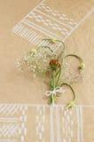 La vie toujours avec les bourgeons et le bouquet d'ail fleurit sur le dessin de papier avec la serviette Photographie stock