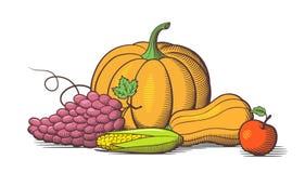 La vie toujours avec les fruits mûrs frais Illustration de vecteur olored par ¡ de Ð Photo libre de droits