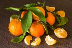 La vie toujours avec les mandarines oranges Images libres de droits