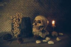 La vie toujours avec un crâne Image libre de droits