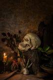 La vie toujours avec un crâne humain avec des usines de désert, cactus, roses Image libre de droits
