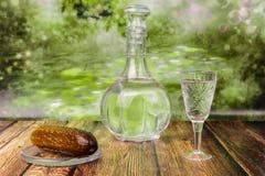 La vie toujours avec un décanteur et un verre de vodka avec des conserves au vinaigre Image libre de droits