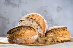 La vie toujours avec un esprit rond traditionnel de pains de pain de seigle d'artisan Image libre de droits