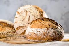La vie toujours avec un esprit rond traditionnel de pains de pain de seigle d'artisan Images stock