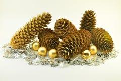La vie toujours des cônes de pin Photo stock