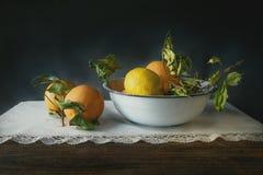 La vie toujours des oranges et des citrons photographie stock libre de droits