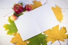 La vie toujours des pommes et d'un carnet contre Images stock