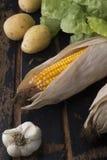 La vie toujours du maïs, de la laitue, des pommes de terre et de l'ail Images libres de droits