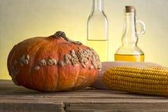 La vie toujours du potiron, du maïs et de la betterave image libre de droits