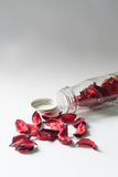 La vie toujours du sachet de fleur dans la bouteille en verre Photographie stock libre de droits