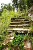 La vieille échelle en pierre entourée avec une herbe verte photos stock