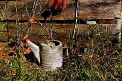 La vieille eau de vintage spprinkling peut Photo stock