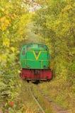 La vieille locomotive monte lentement le long du tunnel étroit des arbres Tunnel de l'amour - endroit merveilleux créé par nature Photos stock