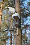 La vieille maison d'oiseau Images libres de droits