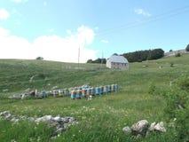 La vieille maison en pierre et les ruches image stock