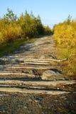 La vieille route abandonnée Photographie stock libre de droits