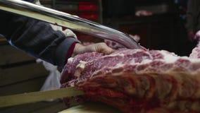 La vieille viande de porc de coupe de boucher avec a vu dans lent banque de vidéos
