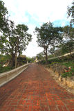 La vieille voie de brique Image stock