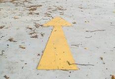 Hojas en el piso del cemento stock images 172 photos for Pisos en la flecha