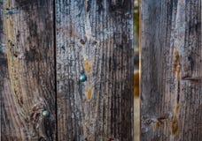 La vieja puerta de madera resistida con el metal Brads el fondo Foto de archivo libre de regalías