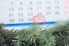 La vigilia di nuovo anno Immagini Stock Libere da Diritti
