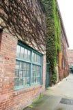La vigne a couvert l'immeuble de brique Image libre de droits