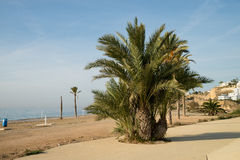 La Vila beach Royalty Free Stock Photography