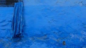 La ville bleue de Chefchaouen, Maroc Photo stock