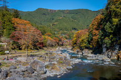 La ville de Mitake et la rivière de Tama en automne assaisonnent Images libres de droits