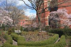 La ville de New-York Image libre de droits