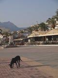 La ville du remblai de sitia Crète Photo libre de droits