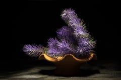 La violeta florece la composición Imagen de archivo