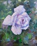 La violeta hermosa subió Imagen de archivo libre de regalías