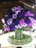 La violeta se levantó Imágenes de archivo libres de regalías