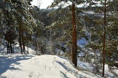 La visión abajo de la montaña El invierno en un bosque del pino abajo es la fuente de agua sin hielo Fotos de archivo