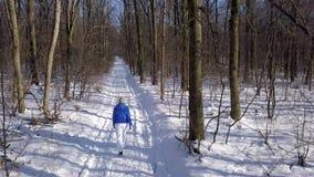 La visión desde la altura a la mujer en ropa caliente da un paseo a lo largo de una trayectoria entre el paisaje nevado del invie metrajes